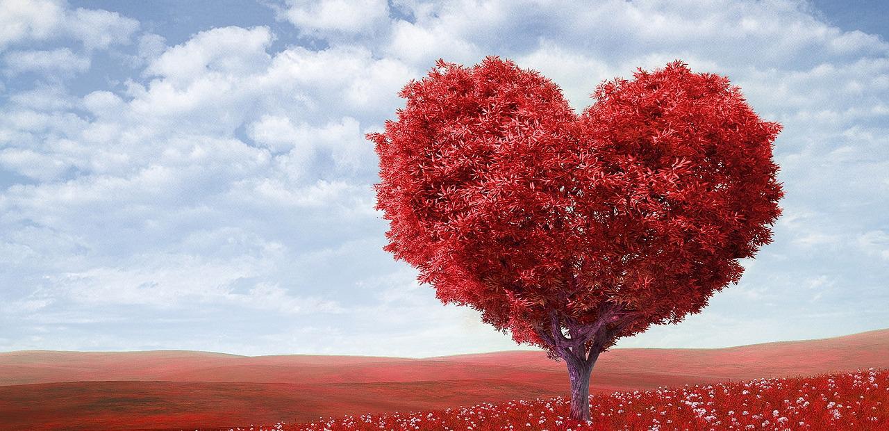 albero a forma di cuore rosso