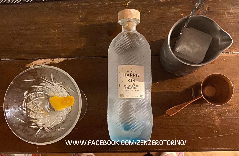 bottiglia di gin harris, bicchiere e shaker